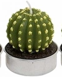 Set van 3x stuks cactus kaarsen waxinelichtjes van 5 cm - Groene cactussen theelichtjes/waxinekaarsen