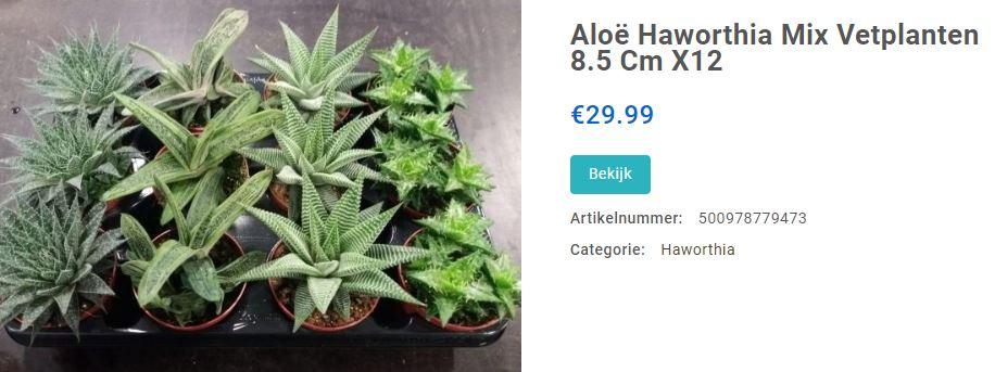 mix plantjes