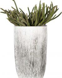 Kamerplanten van Hee Dat Is Het | Rhipsalis Horrida in vaas vintage | 40 cm Hoog
