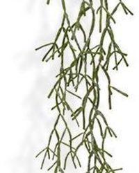 Maxifleur - Rhipsalis Trigona kunsthangplant 100 cm