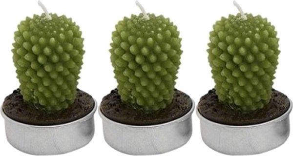 Set van 3x stuks cactus figuur waxinelichtjes 5 cm - Decoratie theelichtjes/waxinekaarsjes.
