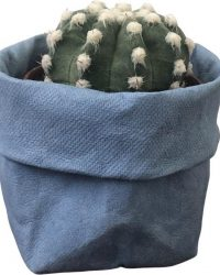 de Zaktus | combi van paper bags met cactus en of vetplant | Maat S en M