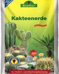BioFlor Cactus potgrond - 5 liter - Voor de mooiste resultaten!
