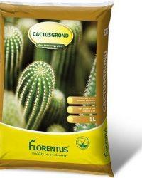 Florentus potgrond voor cactus en vetplanten