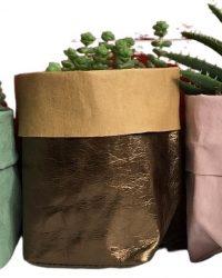 de Zaktus - Crassula Hottentot - Aloe Mitriformis - Mammillaria Toluca - paper bag roze - brons - licht groen - Maat M