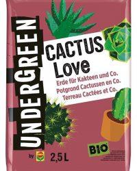 Undergreen Cactus Love - potgrond cactussen 2,5 l - set van 4 stuks