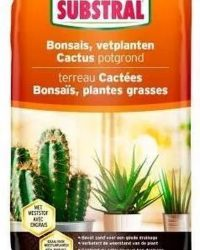 Substral potgrond voor cactus, bonsai en vetplanten - 6 liter - set van 2 stuks