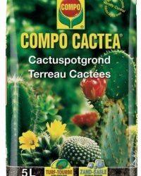 Potgrond cactussen 5 liter