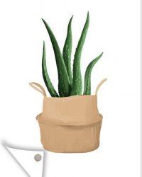 Tuinposter - Illustratie van een Aloë vera plant - 60x90 cm