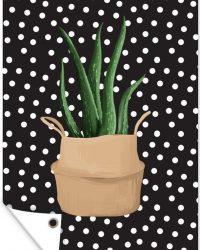 Tuinposter - Illustratie van een Aloë vera plant op een zwarte achtergrond met witte stippen - 40x60 cm