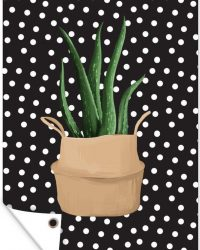 Tuinposter - Illustratie van een Aloë vera plant op een zwarte achtergrond met witte stippen - 60x90 cm