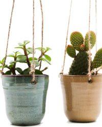 Ikhebeencactus cactus en vetplanten mix in flying Fiep hangpot 2 stuks