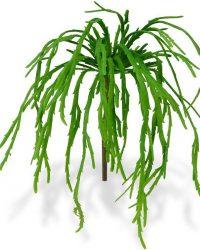 Rhipsalis Lepismium Boeket 30 cm