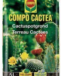 Potgrond cactussen 5 liter - set van 5 stuks